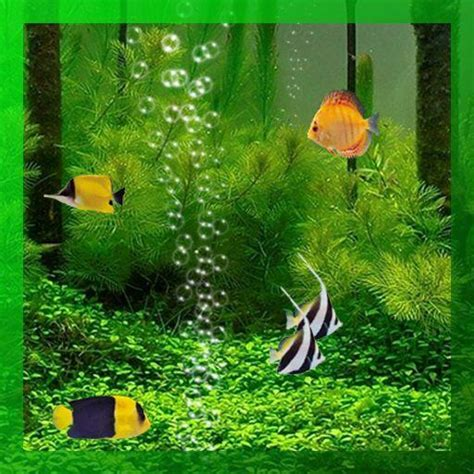 fish tank   wallpaper apk  wallpapers