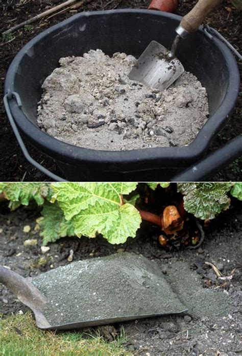 Wood Ashes In Garden by Using Wood Ashes In The Garden Organic Gardening