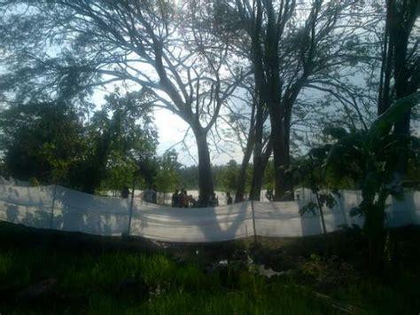 detiknews ngawi peri roro setyowati melahirkan ratusan warga datangi