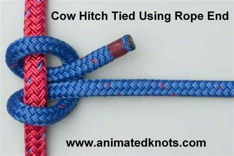 Hitch Knot - cow hitch how to tie the cow hitch using the end knots