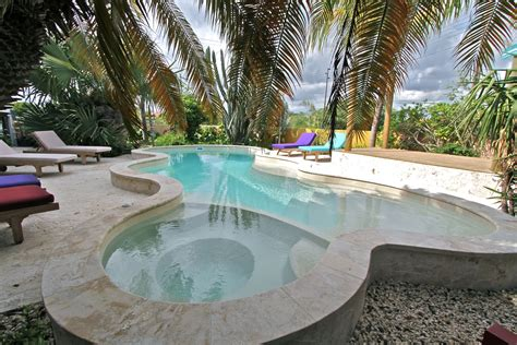 Best Home Pools by Palmbomen Tuintuin