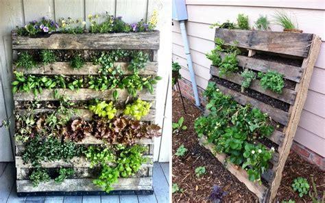 giardino verticale pallet come creare un orto verticale con i pallet soluzioni di casa