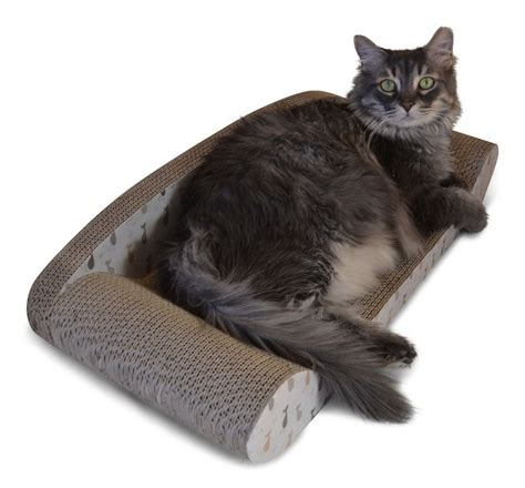 protect sofa from cat com kitty couch by feline be mine corrugated