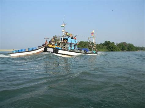 fishing boat rate in india fishing boat picture of goa india tripadvisor