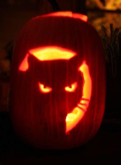 cat pumpkin 21 cat pumpkin carvings catster