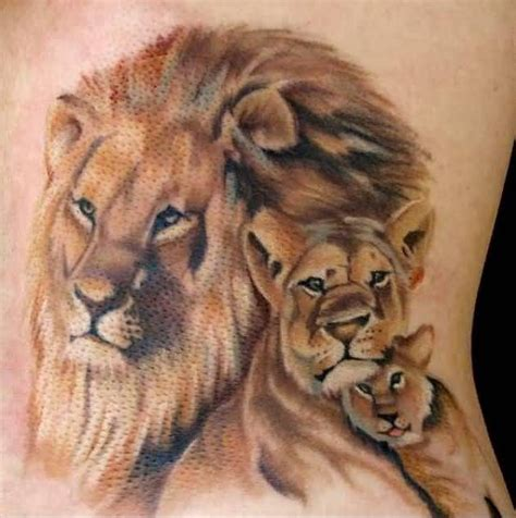 lioness tattoo 25 best ideas about lioness on