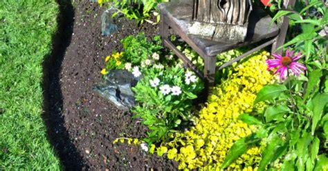 how to edge flower beds how to edge flower beds like a pro hometalk