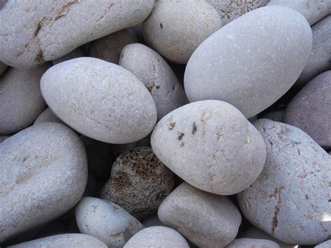 imagenes uñas negras con piedras decoraci 243 n de jardines con piedras y plantas florister 237 a