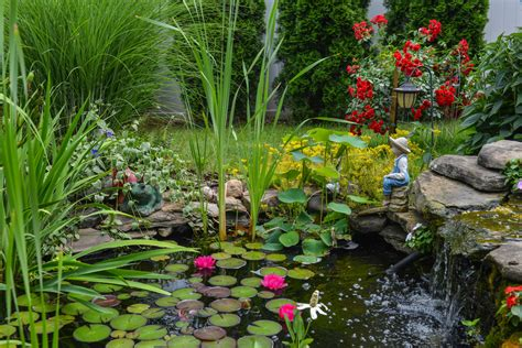 build yourself a pond here s how ritchie feed seed