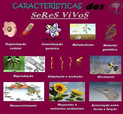 libro todos los seres vivos m 225 s de 20 ideas incre 237 bles sobre seres vivos caracteristicas en seres vivos