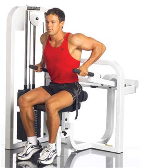 assisted bench press machine assisted chest dip bodybuilding wizard