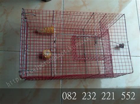 Perangkap Tikus Yang Sederhana produk perangkap tikus massal perangkap tikus sederhana