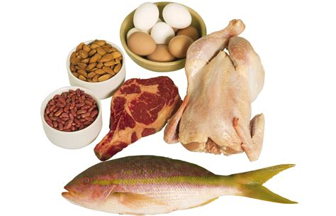 5 proteins in the 5 signs you re not enough protein