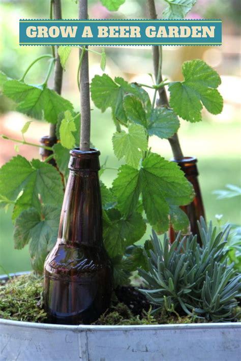 Garden In A Bottle | beautiful bottle gardens that will make you beam bored art