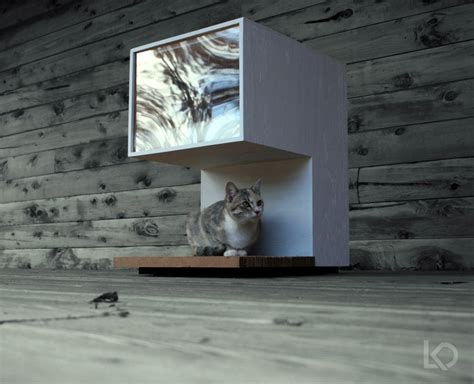 Cat In House by Spaces For Pets Inside Homes