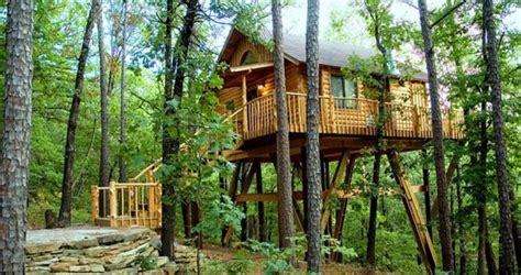 home insurance trees close to house 6 amazing tree house hotels to try out