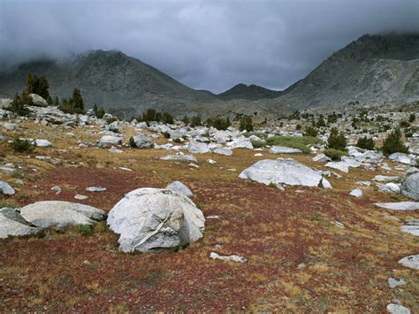 Landscape Environment Definition Tundra Facts Information And Threats From Climate Change