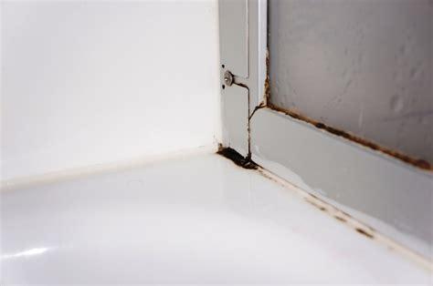 Schimmel In Dusche Entfernen 5279 schimmel in der dusche lizenzfreie fotos bilder