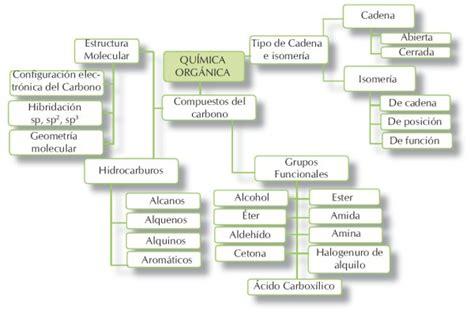 cadenas carbonadas de amidas biologia2bachc qu 205 mica del carbono