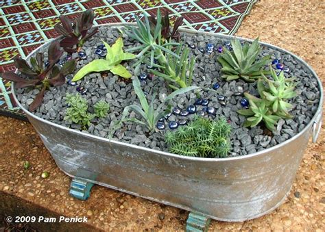 Galvanised Planters For Garden by Galvanized Planters Diggingdigging