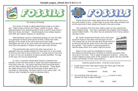 Fossil Worksheets by Fossil Worksheets Lesupercoin Printables Worksheets