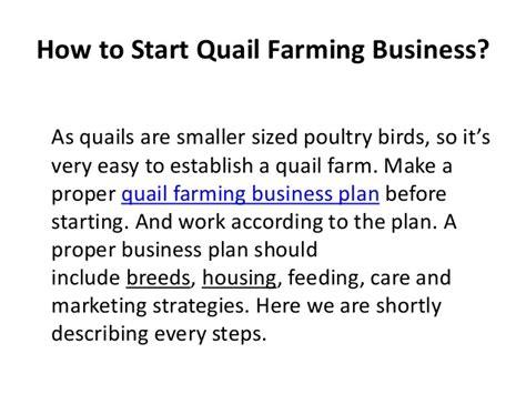 sle business plan on fish farming fish farming business in nigeria quail farming business