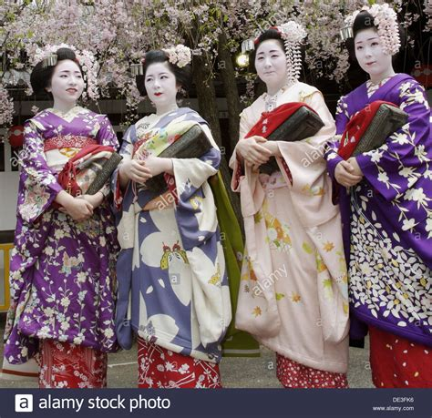 Pictures Of Cherry Blossoms by Geisha In Traditional Make Up And Wearing A Kimono In The