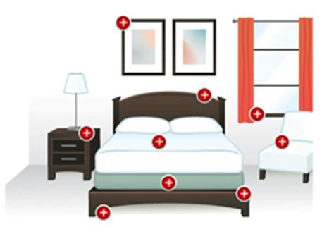 Bed Defense by Search For Bed Bugs Trends Shows An Increase In