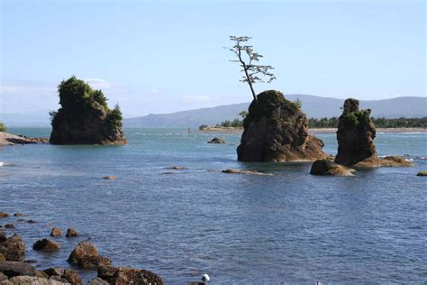 Tillamook County Court Records Tillamook County Association Of Oregon Counties