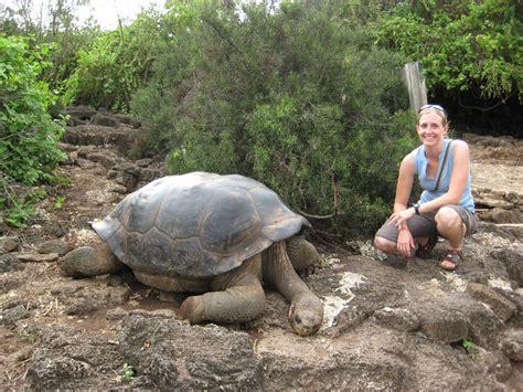 galapagos islands animals ben and alonna 187 blog archive 187 galapagos islands animals