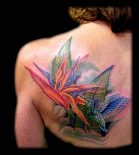 paradise tattoo designs aaron goolsby tattoos nature hummingbird and bird of