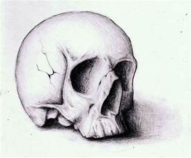 skull sketch by villecruz on deviantart