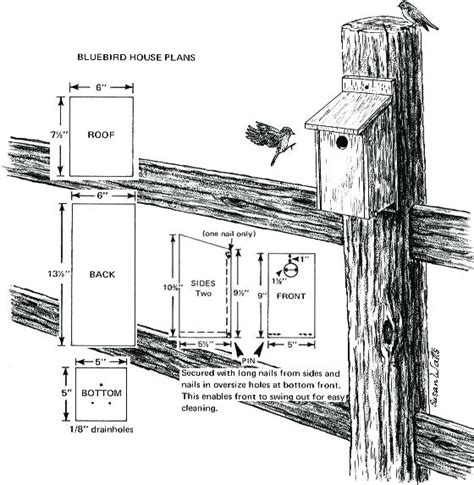Eastern Bluebird House Plans Free Bluebird Bird House Plans Salmaun Me