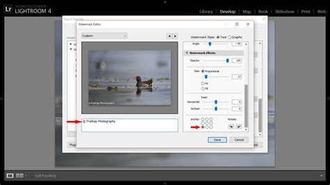 lightroom tutorials for photographers post processing tips for bird photography import export