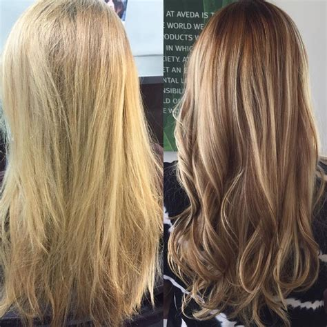 hair color spectrum before and after to highlights and