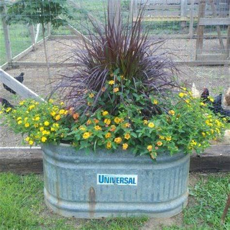 17 best images about container gardens flowers/veggies ii