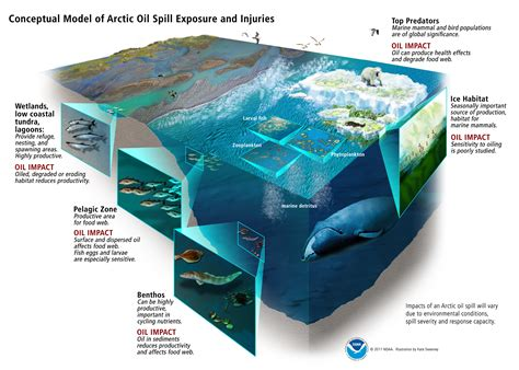 consequences of being sectioned how would chemical dispersants work on an arctic oil spill