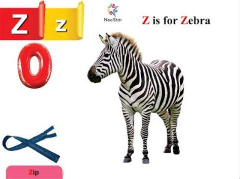 words with the letter z z is for zebra now start with letter z 1743