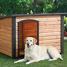 petsmart dog houses igloo dog houses wooden igloo style homes for dogs petsmart