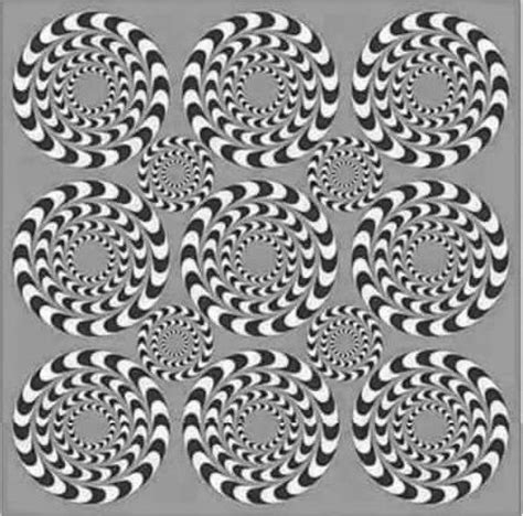 choices and illusions how did i get where i am and how do i get where i want to be best 25 optical illusions ideas on pinterest illusions