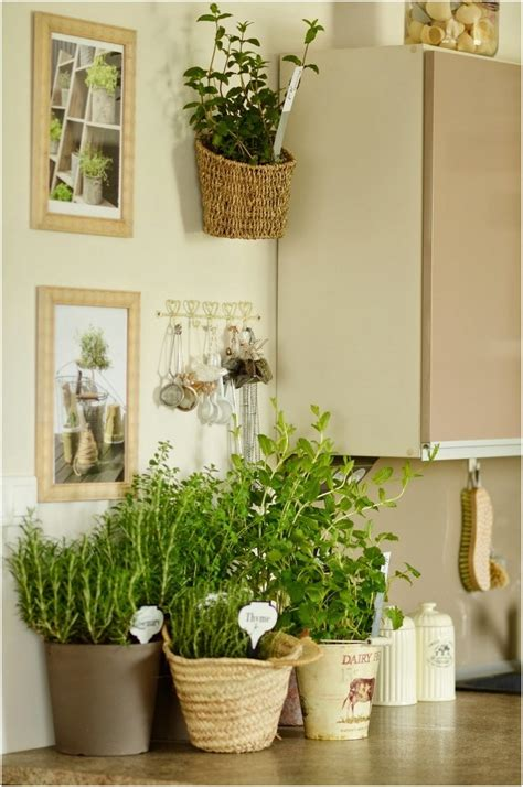 decorate kitchen with herb garden tips and diy ideas