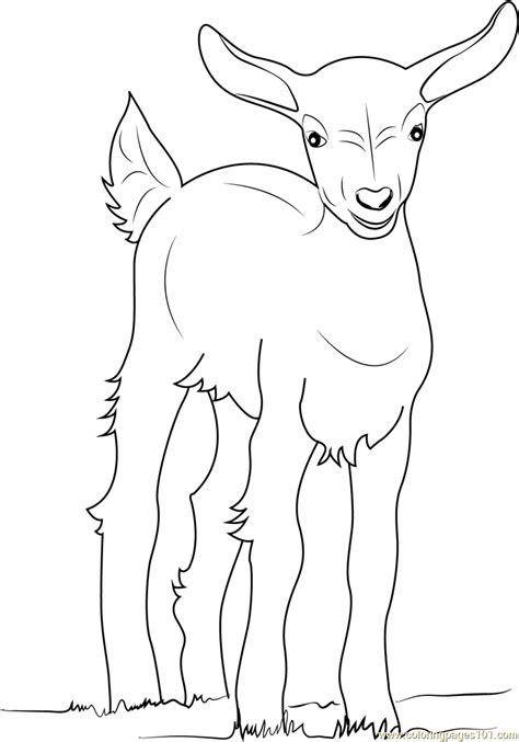 goat simulator coloring pages authentic goat coloring pages baby page free 3133