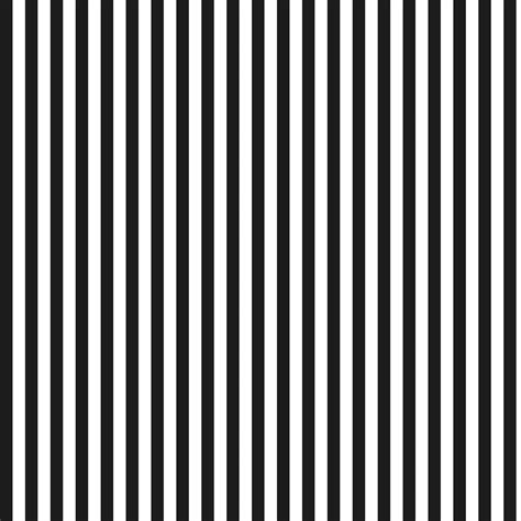 black and white striped l black and white stripes pictures click to download save