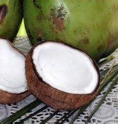 coconut for ear infection 37 best images about health ear infections on milk protein beats and