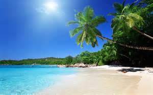 Blinds Sunshine Coast Studio Backgrounds Most Beautiful Beaches