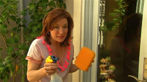 get sparkling clean windows home with quinn the