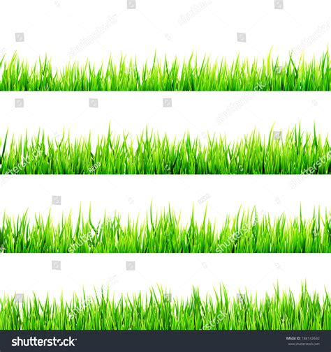 Green Also Search For Green Grass Isolated On White Background And Also