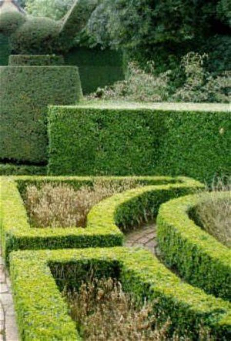 giardino all italiana il giardino all italiana