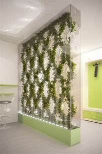 Plant Partition Green Partition Cleans The Air In Your Home Tuvie