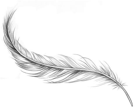 feather tattoo designs pinterest feather tattoo tattoos pinterest feather tattoos